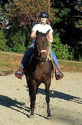 GabCreek Farm: Foundation Morgan Horses  Home of PKR